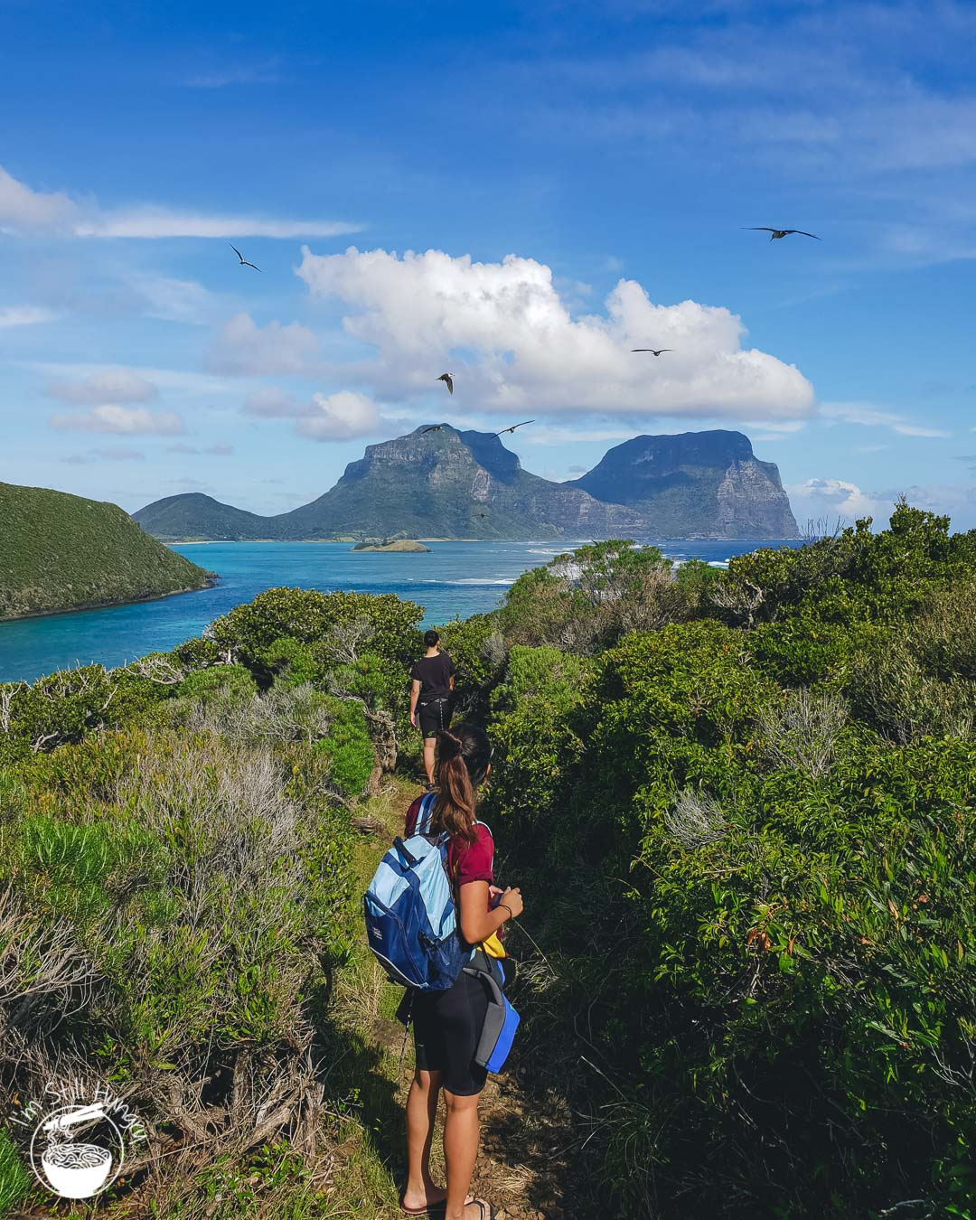 Lord Howe Island Beaches: Australia's Pristine Paradise