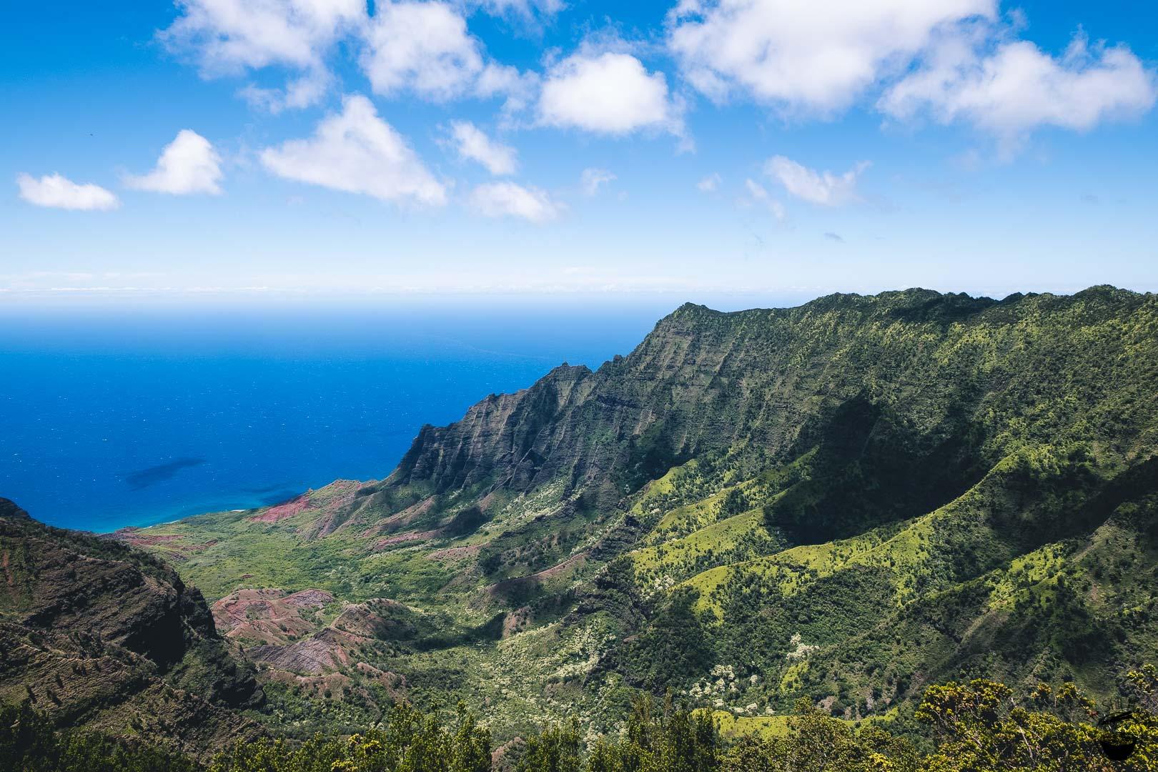 Pu'o Kila Lookout Kauai Hawaii