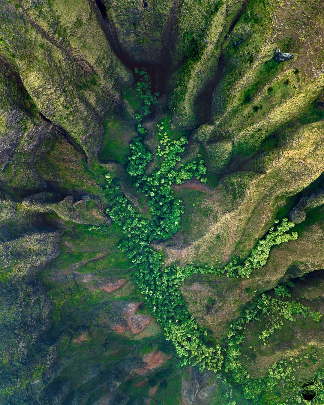Awaawapuhi Trail Kauai Hawaii