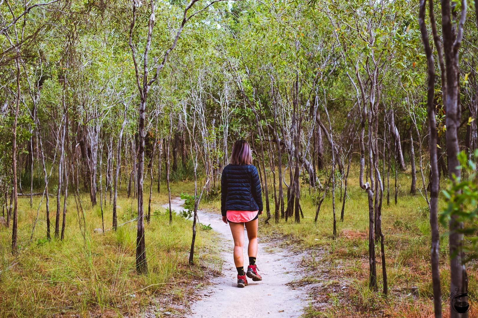 Kakadu National Park Anbangbang Billabong Track