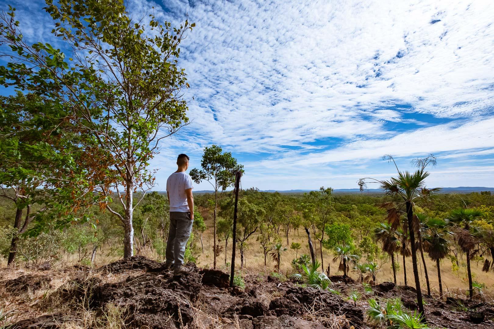 Kakadu National Park Bukbukluk Lookout