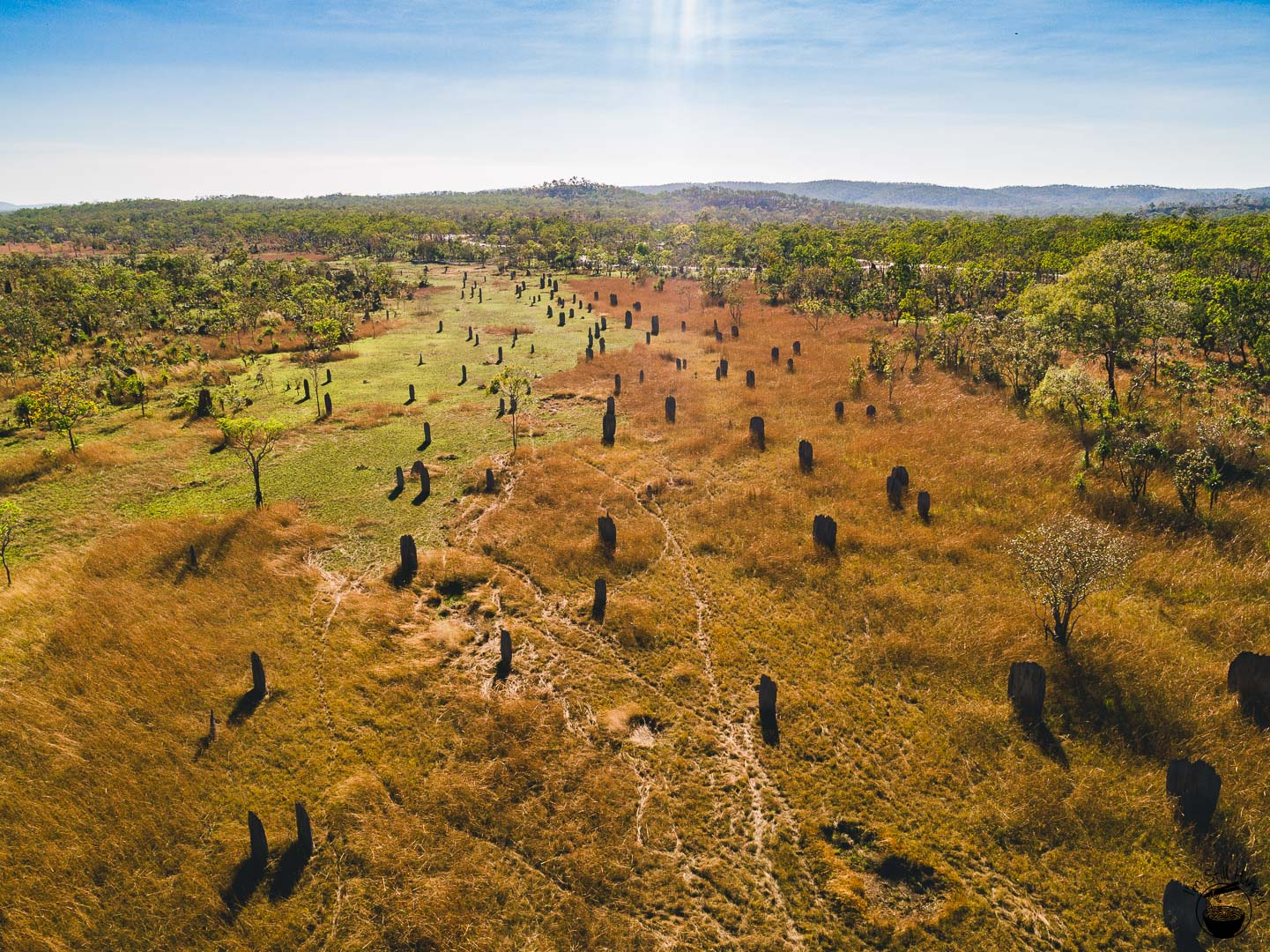 Litchfield National Park Magnetic Termite Mounds