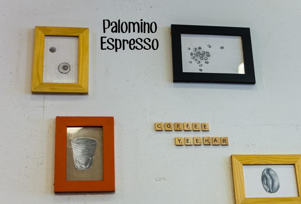 Palomino Espresso Cover