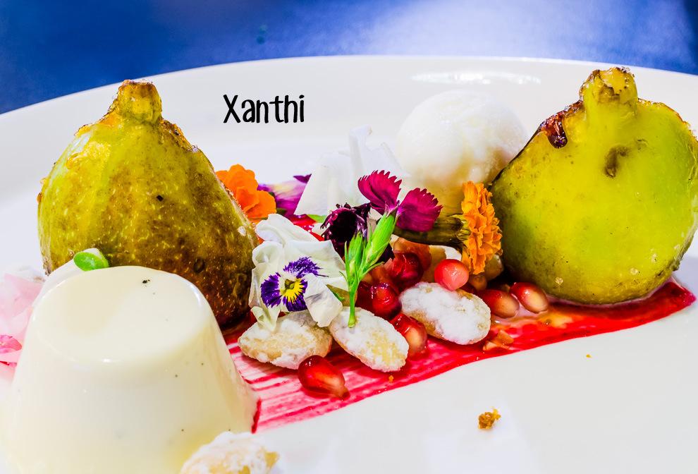 Xanthi Cover